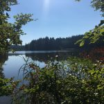 Gallaweiher bei Bernried am Starnberger See