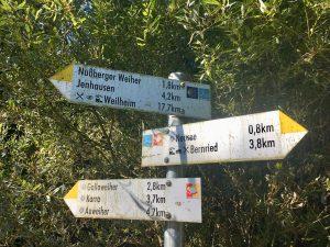 Wegweiser beim Neusee nähe Bernried