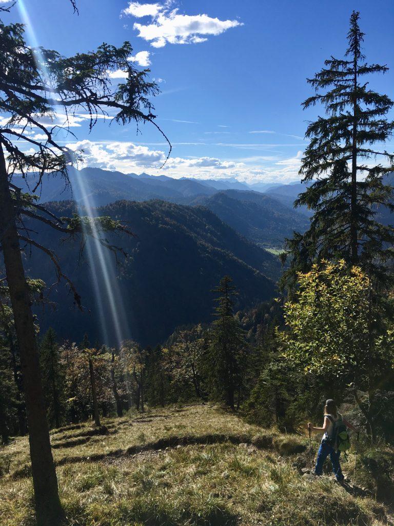 Abstieg zur Langenau über die Ableitenalm