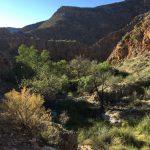 Wandern im Namib Naukluft Park