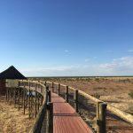 Steg zum Wasserloch am Olifantsrus Camp