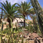Toll angelegter Garten im Gecko Camp