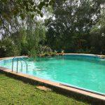 Pool auf der Okambara Lodge