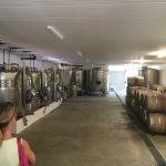 Im Weinkeller des Dunstone