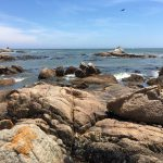 Felsenküste bei Paternoster