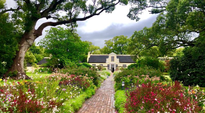 Kapstadt – Interview mit Wein-Tourguide Clarissa Hagemann