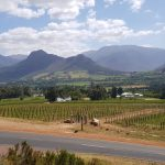 Panorama in den Winelands