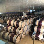 Weinkeller im Delaire Graff