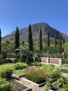 Traum-Panorama ins Franschhoek Valley