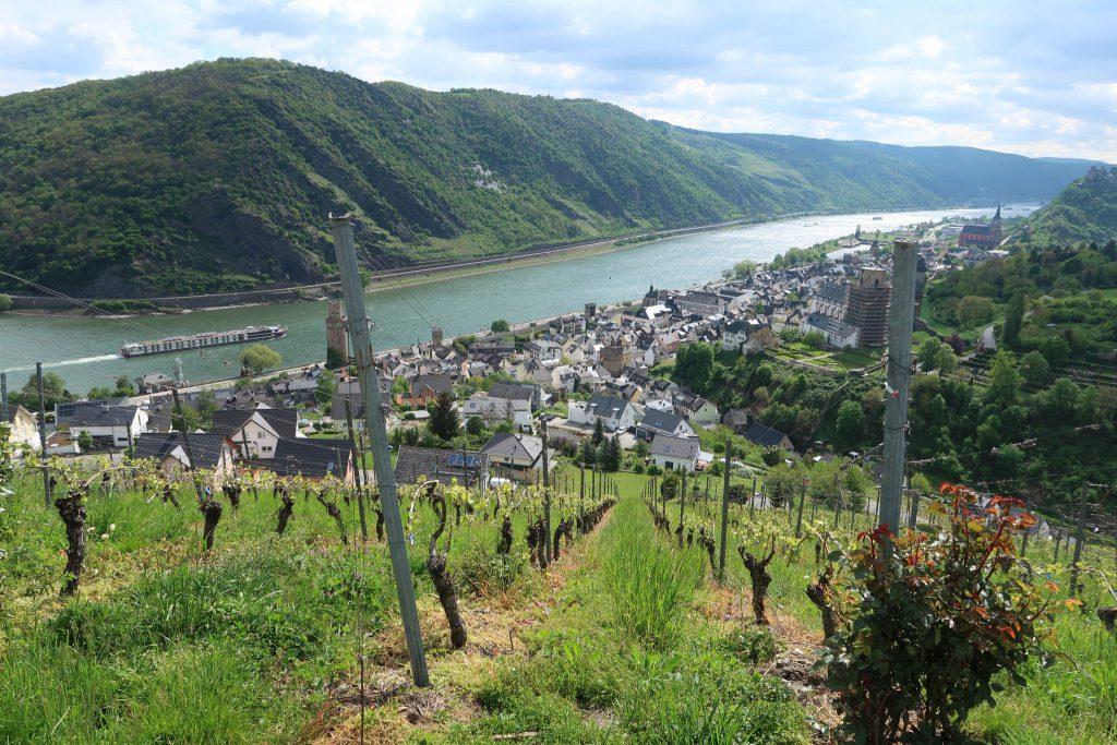 Rhein-Knick bei Oberwesel