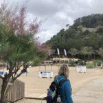 Playa Cala Sant Vicent