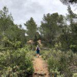 Auf steilen Pfaden im Kiefernwald