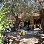 Taverne Oasis am Ende der Agía Iríni Schlucht