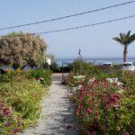 Garten vom Móchlos Mare